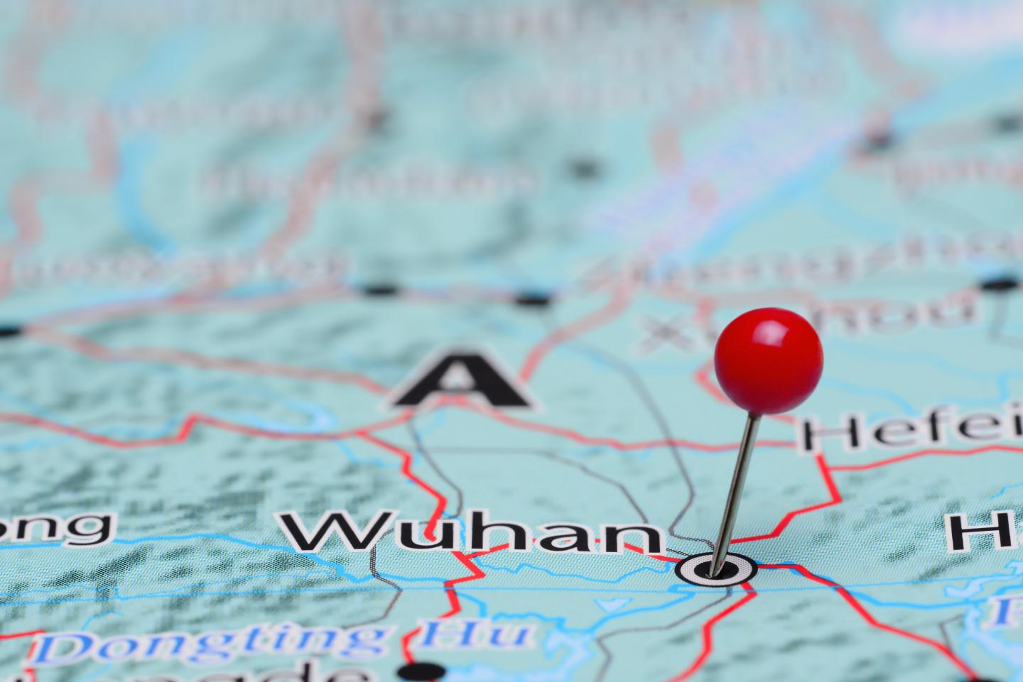 Patient Characteristics of Fatal COVID Cases in Wuhan