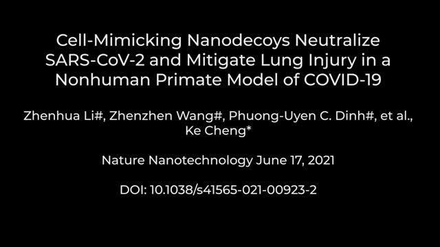 Nanodecoy