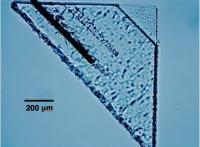 Micrograph of Sorok Picokeystone