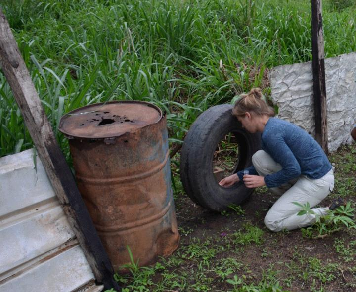 Laura Dickson during a Field Mission in Gabon