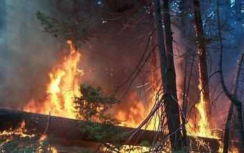 USGS Drought Wildfire Forests