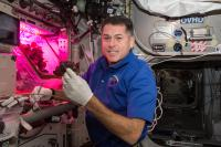 Produce From ISS