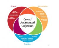 Crowd Augmented Cognition