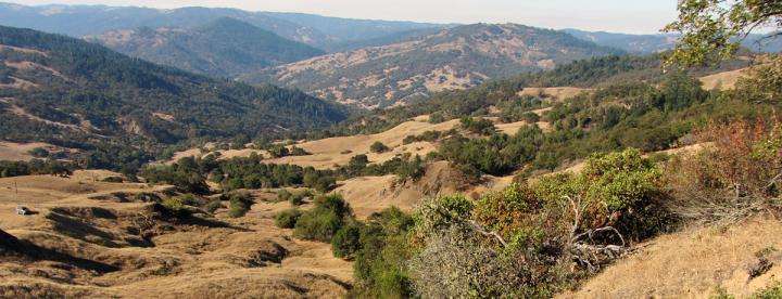 Landslide Area in California's Eel River Basin