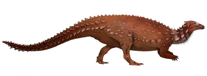 Scelidosaurus_harrisonii image