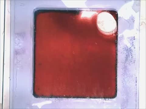 Artificial Chromatophores
