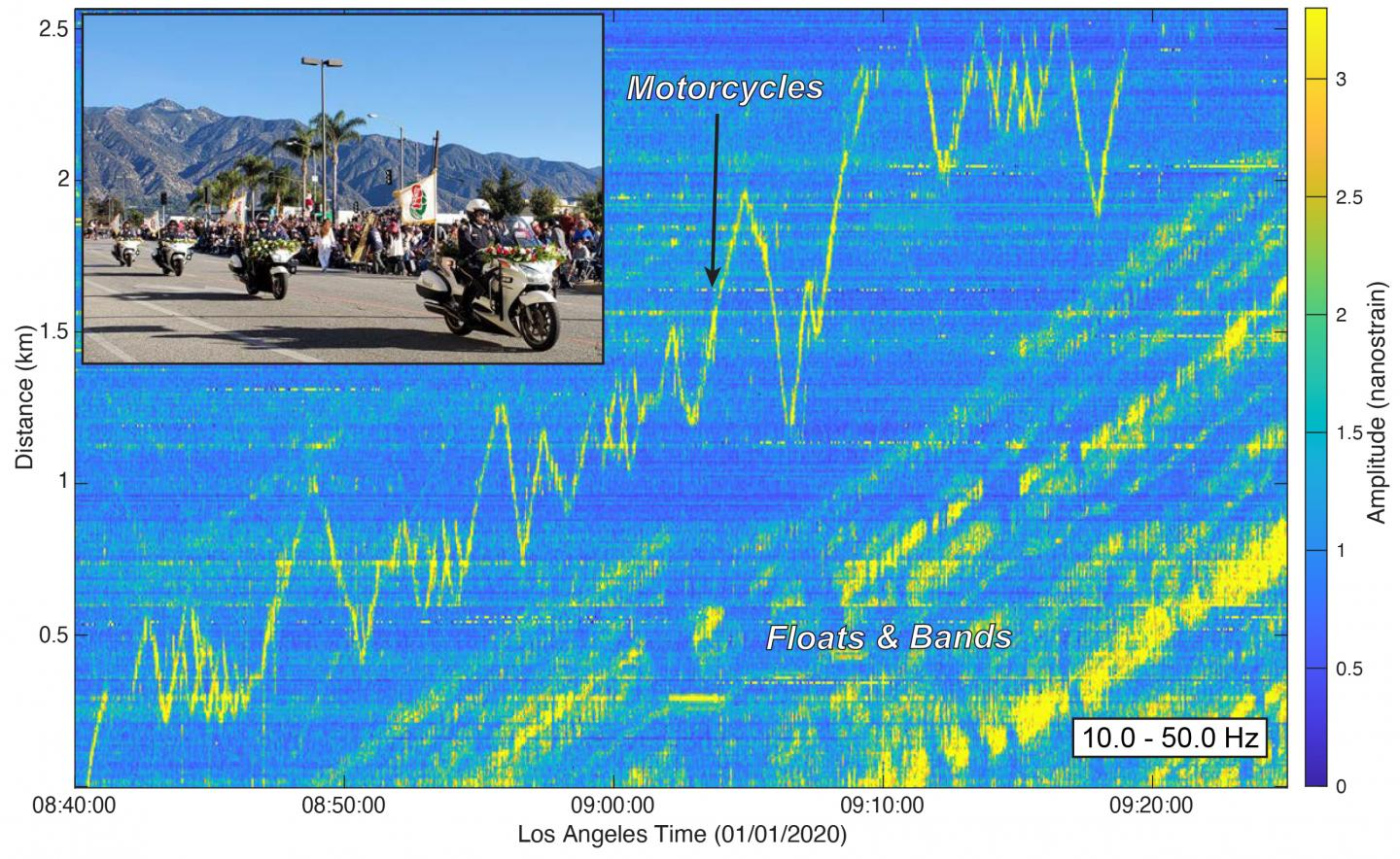 Seismic Signals from 2020 Rose Parade