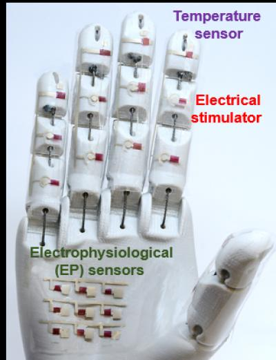 Yu Robotic Hand