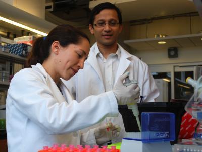 Vihang Narkar and Sabina Lorca, University of Texas Health Science Center at Houston