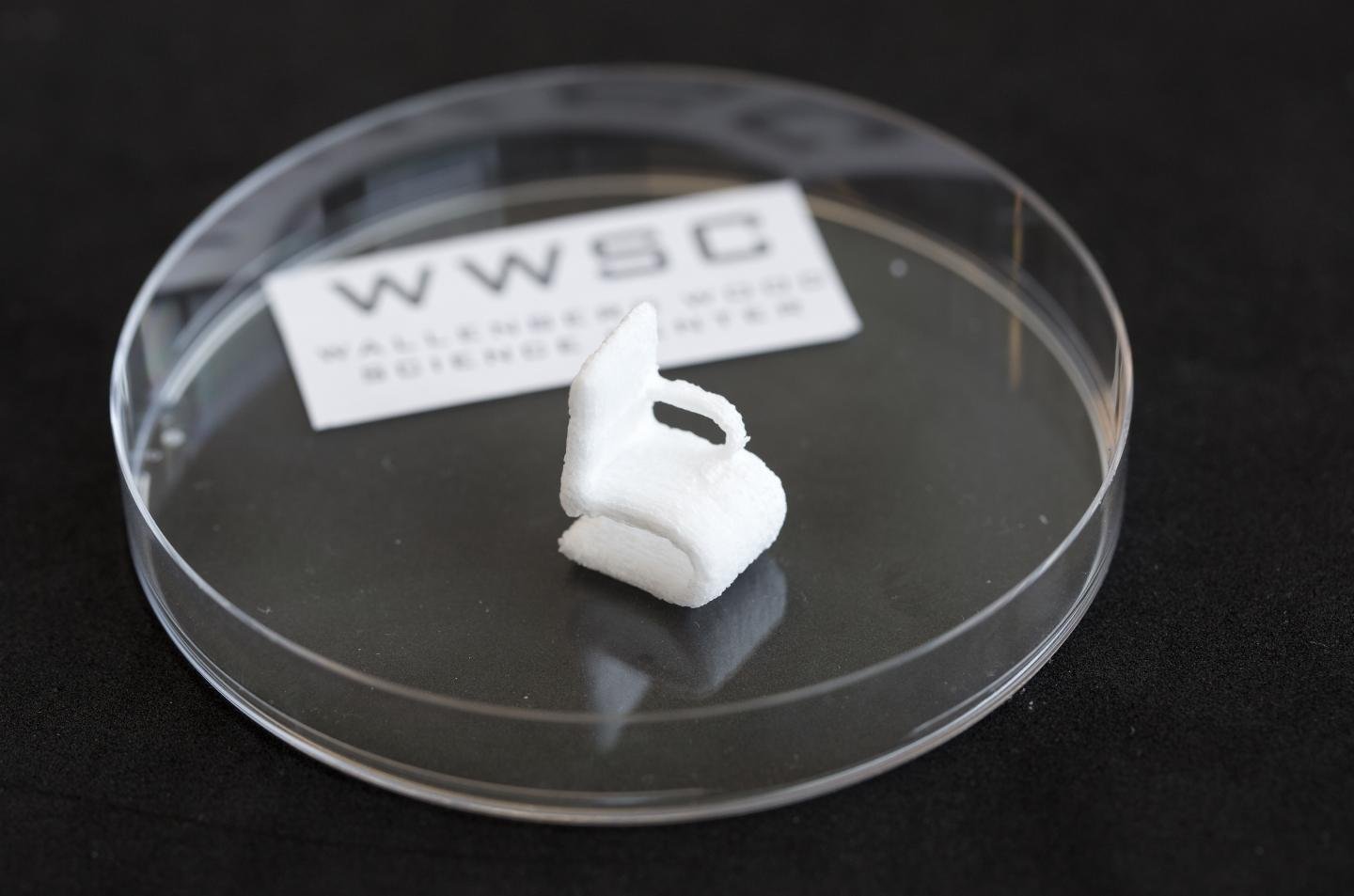 A Cellulose Object Printed using a 3-D Bioprinter