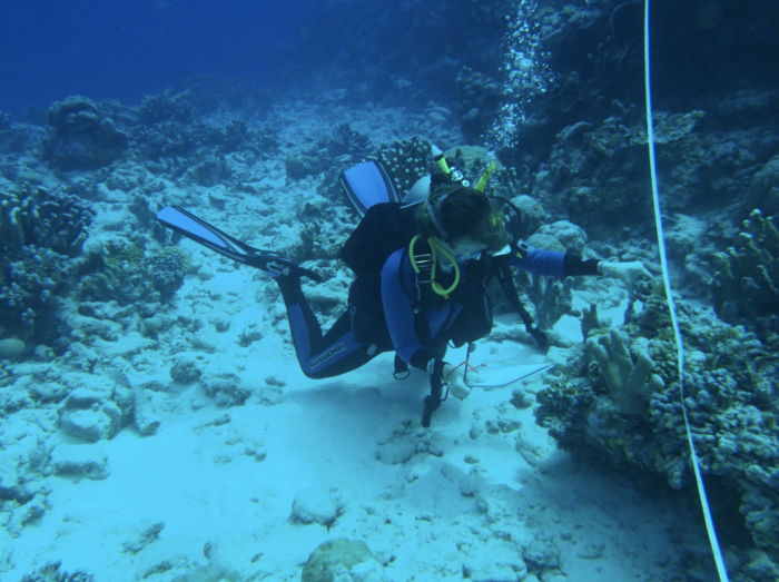 Study of coral reefs of Pacific Gilbert Islands could provide sneak preview into effects of climate change-induced heat stress globally