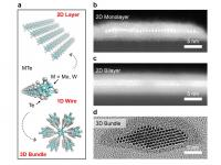 Different forms of nanowires.