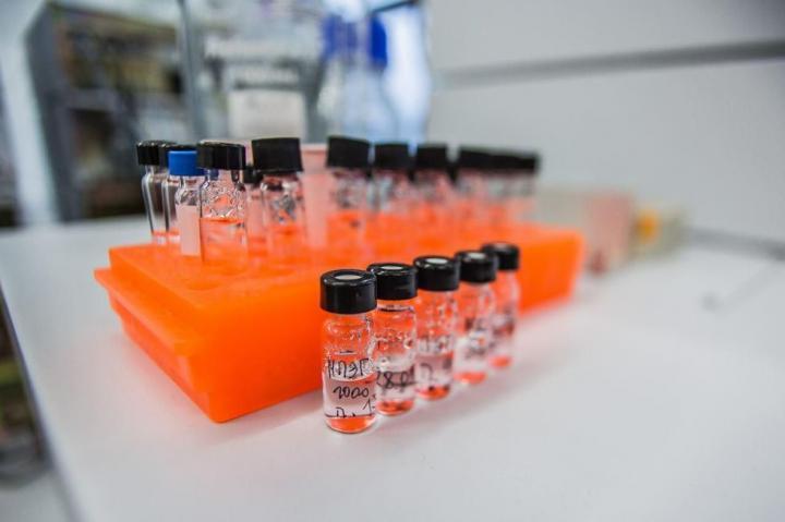 In the Laboratory
