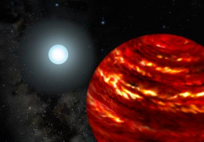 Gas-Giant Exoplanets Cling Close to Their Parent Stars