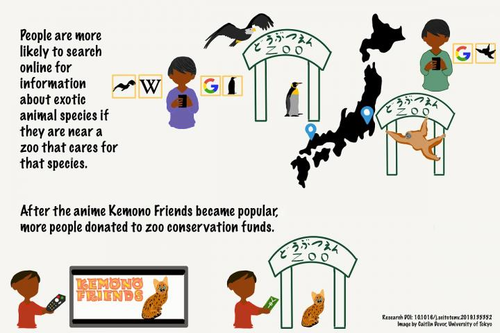 Infographic of Research on the Effect of Anime on Conservation