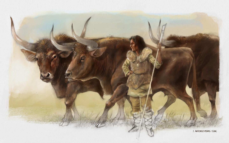 Elba accompanied by the three aurochs found at the site