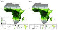 Predicted <em>Plasmodium</em> Prevalence in Africa