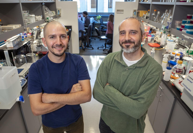 Gabriel Lander and Andres Hernandez de la Peña, Scripps Research Institute