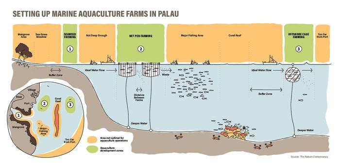a marine aquaculture project