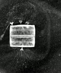 Microcurrents created by ciliate epibionts