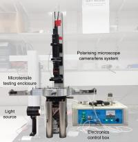 The Microscope Elastomer Stress-Strain Enclosure (MESSE)