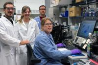 JGI Team that Uncovered Giant Virus Genomes in a Forest Soil Ecosystem