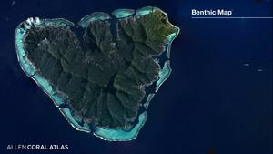 Benthic Map Animation