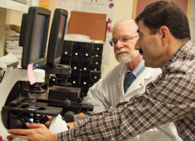 Max Wicha and Hasan Korkaya, University of Michigan Health System