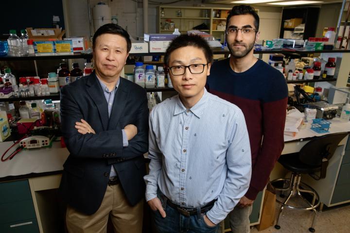 Research Team: University of Illinois at Urbana-Champaign