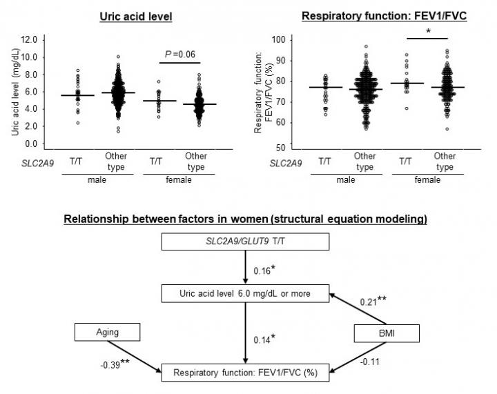 Epidemiological Analysis of Uric Acid Levels Vs Respiratory Function in People 50 Years and Older