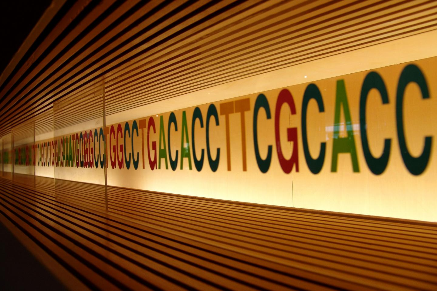 Improve Evolution Education by Teaching Genetics First