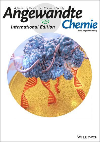 <i>Angewandte Chemie</i> Cover