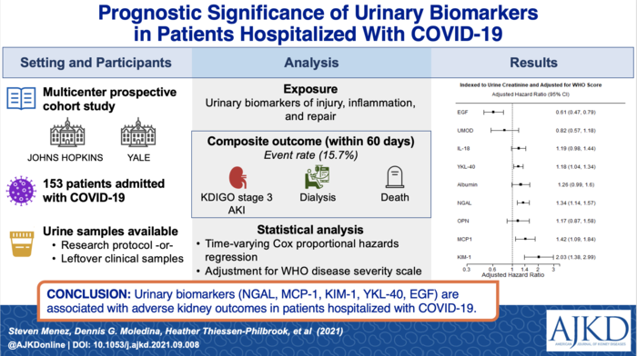 Urinary Biomarkers Predict Severe Kidney Injury in Patients Hospitalized with Covid-19