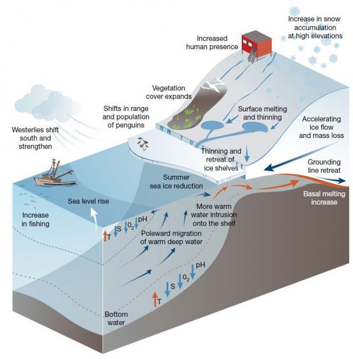 Impacts Diagram