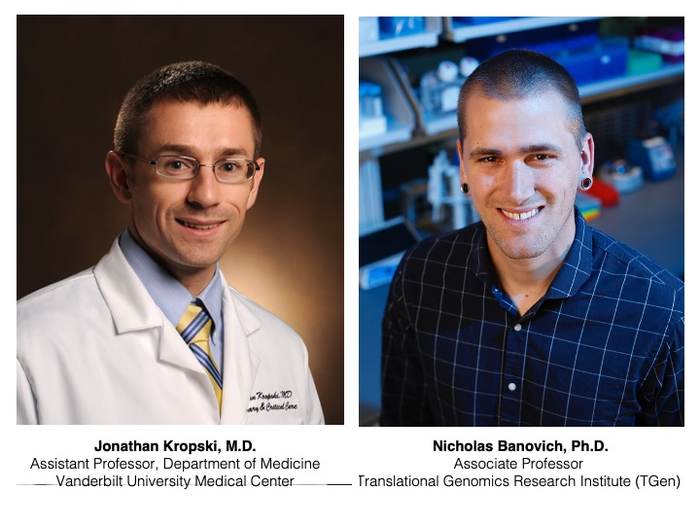 Researchers studying origins of pulmonary fibrosis