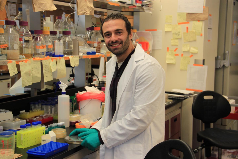 Wael Elhenawy , McMaster University