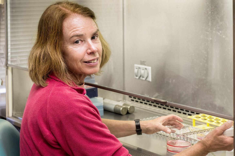 Pamela Maher, Salk Institute