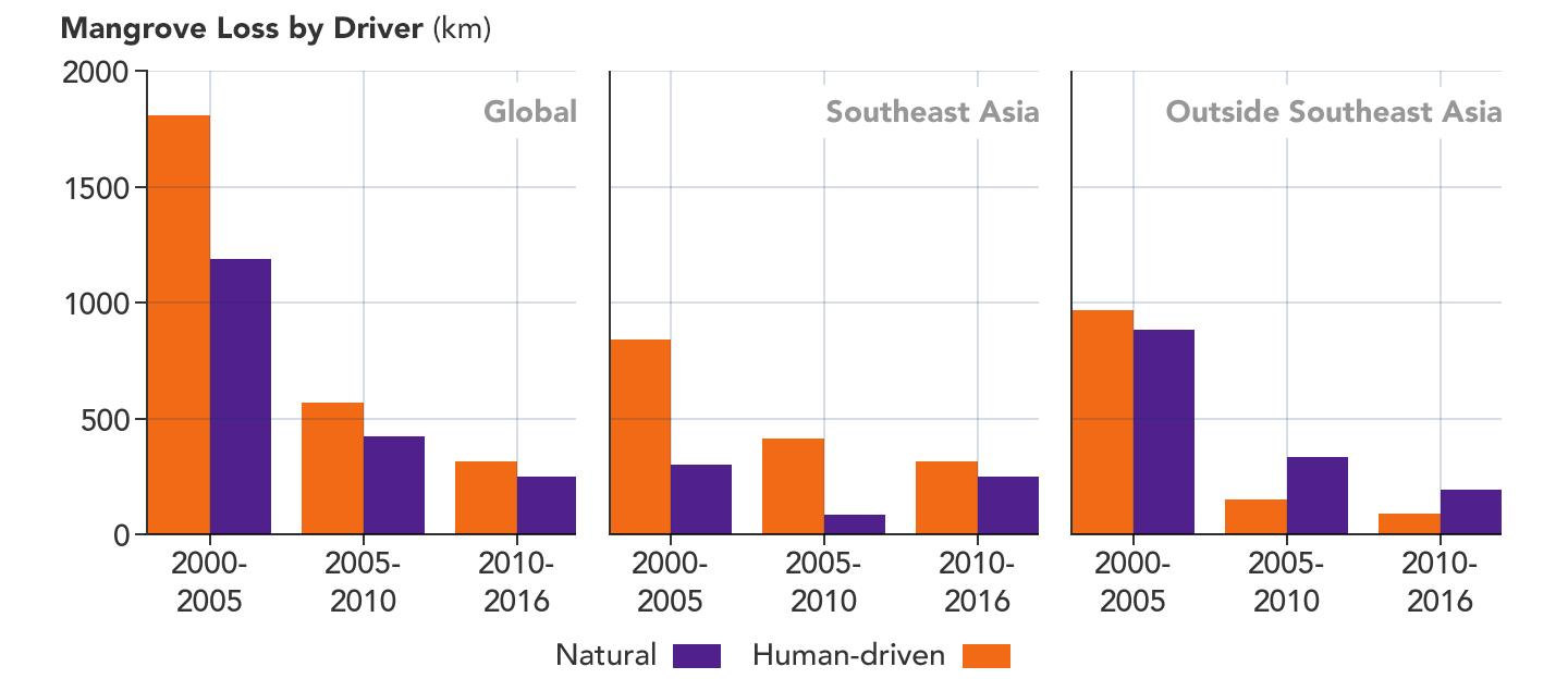 Chart Showing Mangrove Loss by Driver