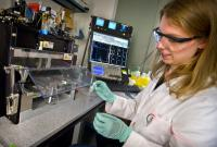 Diane Dickel, DOE/Lawrence Berkeley National Laboratory