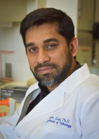 Hasan Zaki, Ph.D.