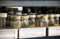 The culture collection at CABI where the microbiomes of the UK's major crops will be held and curated