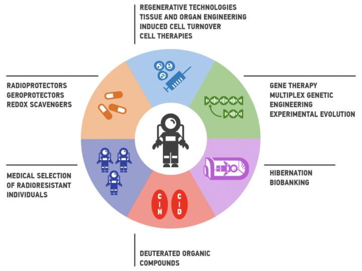 Roadmap To Enhance Human Radioresistance