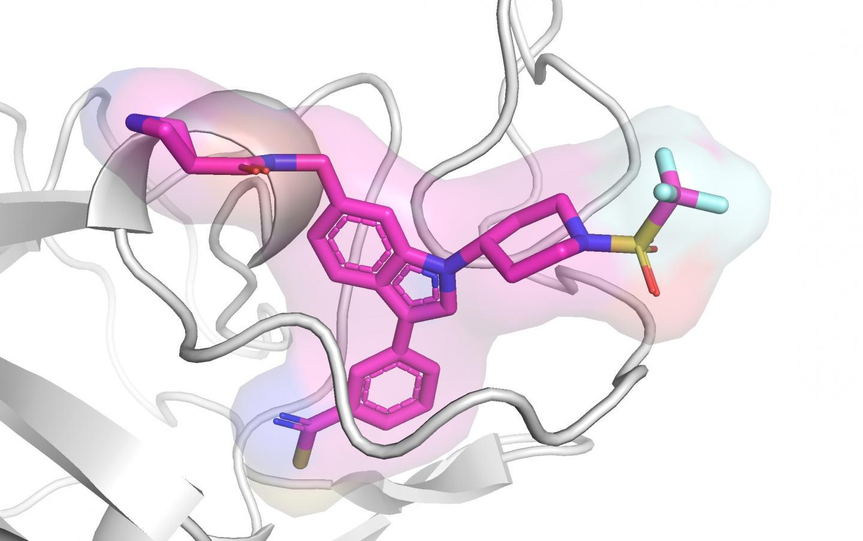ASH1L inhibitor
