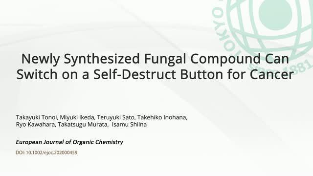 Self-destruct Button for Cancer