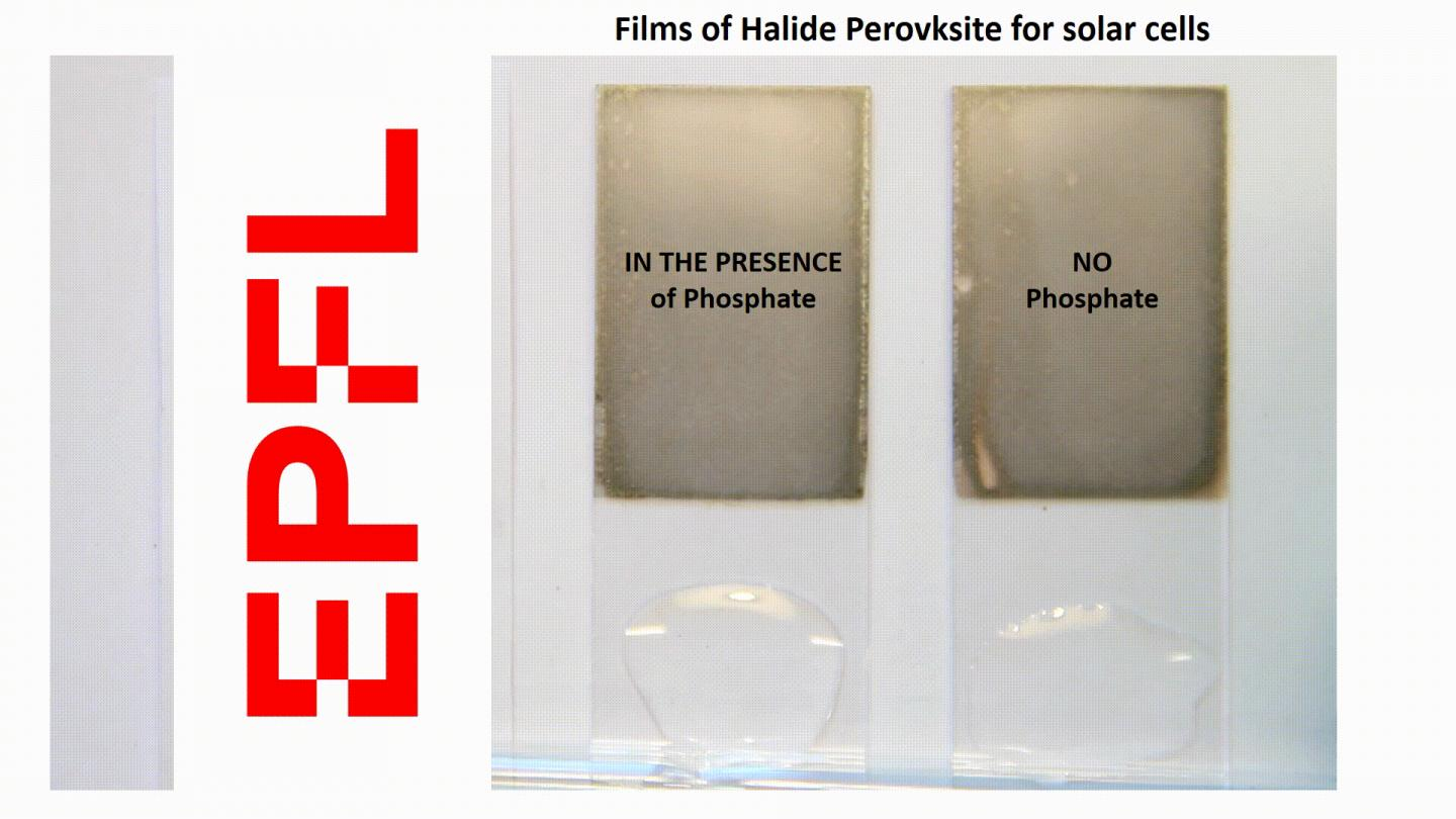 A transparent phosphate crystal immobilizes lead in perovskite solar cells