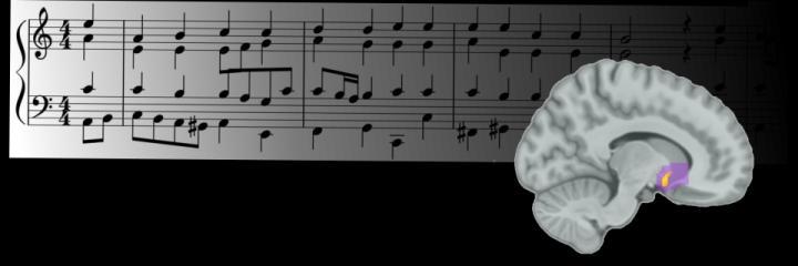 Musical Reward