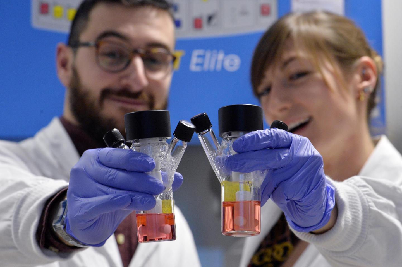 Organoids in Lab