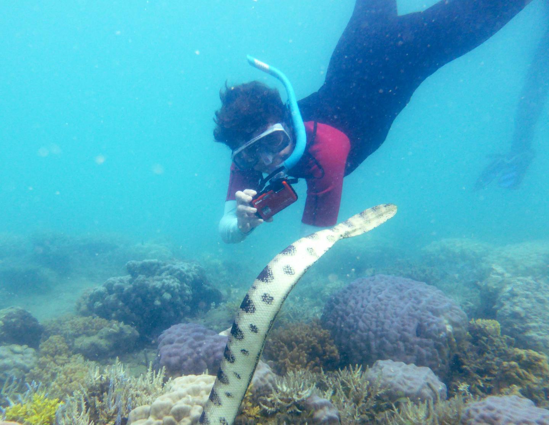Fantastic Grandmother Monique Mazière Photographing Sea Snake Number 79, Nicknamed Déborah