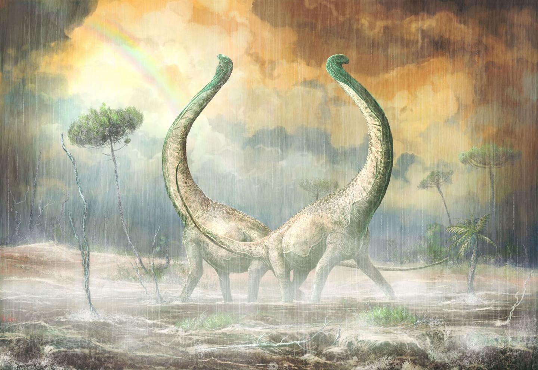 Exceptional New Titanosaur from Middle Cretaceous Tanzania: Mnyamawamtuka