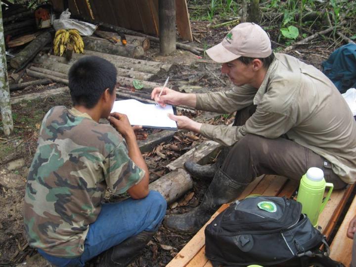 Rain Forest Surveys